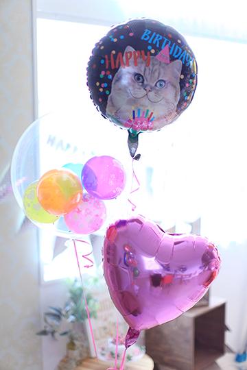 【誕生日 バルーン】Birthday♪ねこちゃん