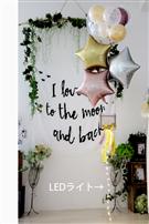 【大型】【パーティー プレゼント】Shabby Star☆LED