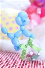 【入園・卒園・入学・卒業】コロコロプードル/ブルー(チョコ)