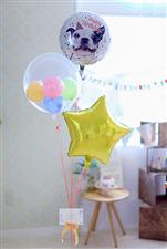 【誕生日 バルーン】Birthday♪わんちゃん