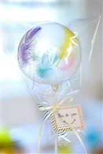 【入園・卒園・入学・卒業】Thank you ステッキ/レインボーフェザー
