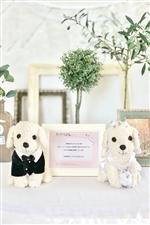 【結婚式 電報 送料無料】ぬいぐるみウエディング/トイプードル(白)